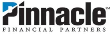 Pinnacle Partners logo